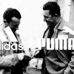 Пума и Адидас